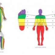 1958441 orig 1 300x219 1 180x180 - تاثیر رفلکسولوژی در بدن چگونه است؟