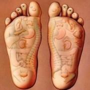 foot body anatomy 300x258 1 180x180 - کدام نقاط بدن مربوط به رفلکسولوژی هستند؟