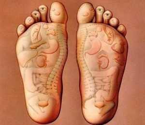 foot body anatomy 300x258 1 300x258 - کدام نقاط بدن مربوط به رفلکسولوژی هستند؟
