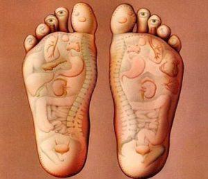 foot body anatomy 300x258 1 - کدام نقاط بدن مربوط به رفلکسولوژی هستند؟