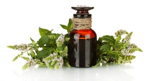 7 5 300x163 - درمان های خانگی برای بوی بد بدن