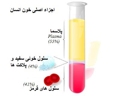 human blood components - خدمات نوین تزریق پی.آر.پی PRP در بهترین مراکز تخصصی زیبان (تهران اسکین)