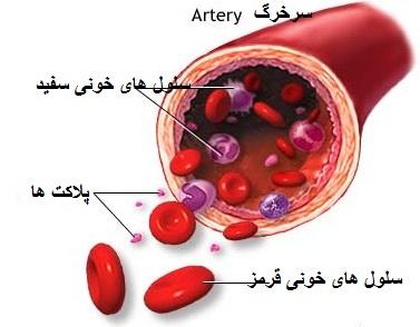 platelets - خدمات نوین تزریق پی.آر.پی PRP در بهترین مراکز تخصصی زیبان (تهران اسکین)
